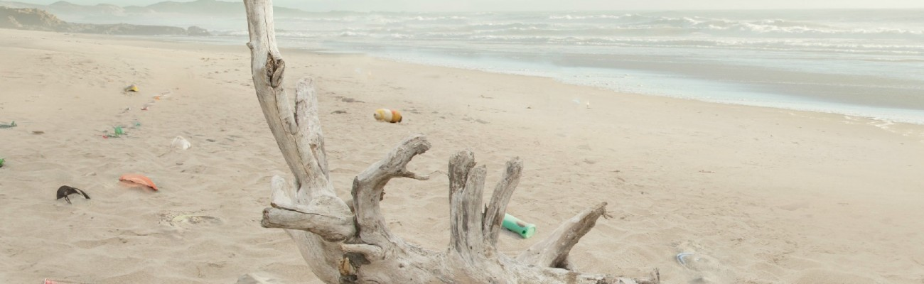 Beach Clean-up is coming up